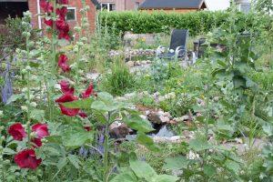 Een mooie tuin in de zomer vraagt in het vroege voorjaar aandacht.