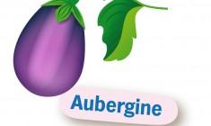 Aubergine uit zaad kweken