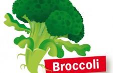 Broccoli uit zaad opkweken