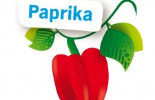 Paprika uit zaad opkweken