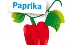 Paprika uit zaad opkweken