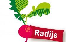 Radijsjes zelf kweken