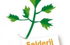 Selderij